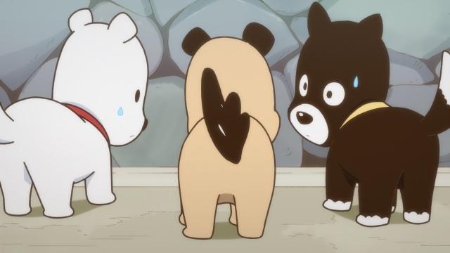 冬アニメ『うちタマ?! ~うちのタマ知りませんか?~』最新PV&CM公開! 放送局と放送時間、各キャラクターの飼い主のビジュアルと声優も決定!