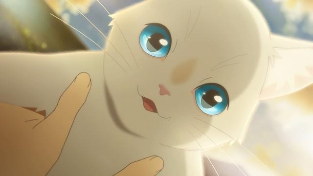 泣きたい私は猫をかぶる-4