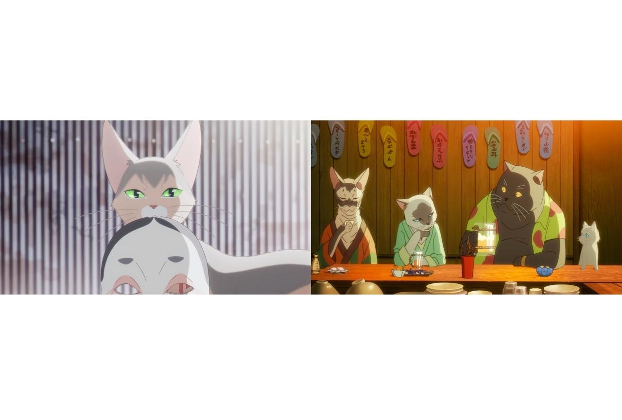 長編アニメ『泣きたい私は猫をかぶる』特別映像公開