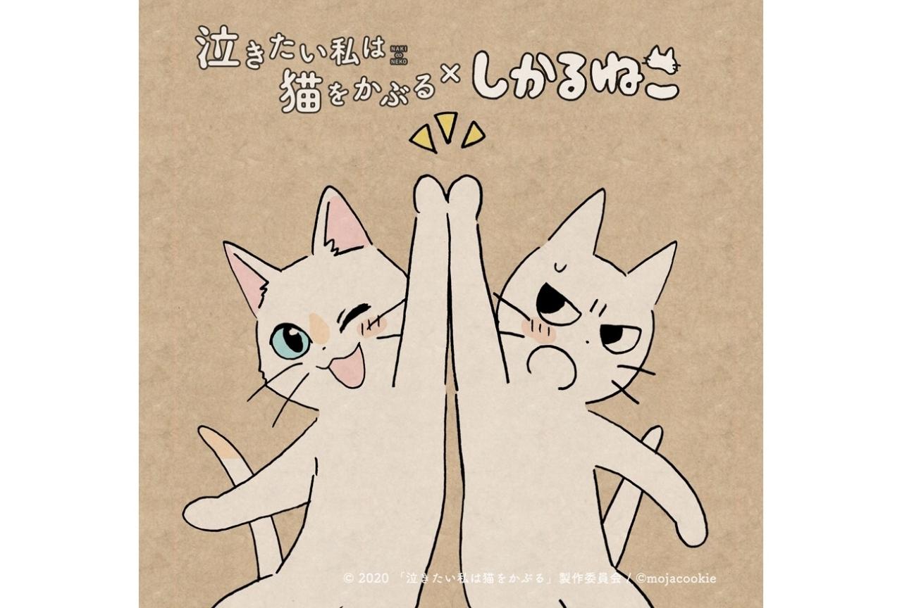アニメ映画『泣き猫』応援隊長に大人気キャラ「しかるねこ」が就任