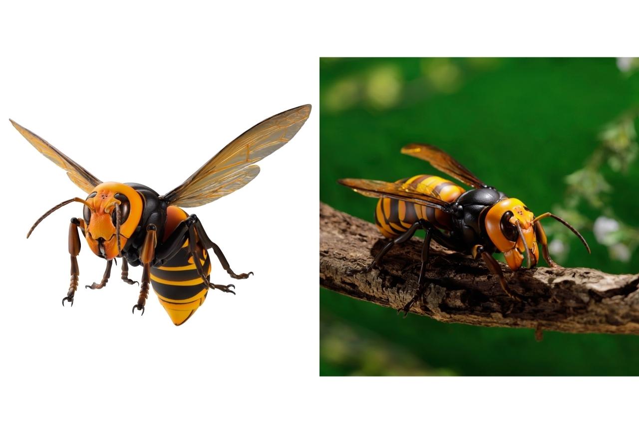 スズメバチ フィギュア