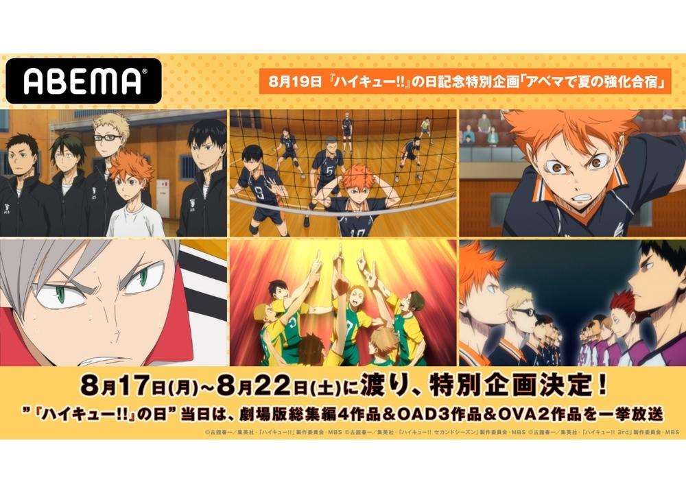 ハイキュー!!の日(8/19)特別企画『ABEMAで夏の強化合宿』開催決定!