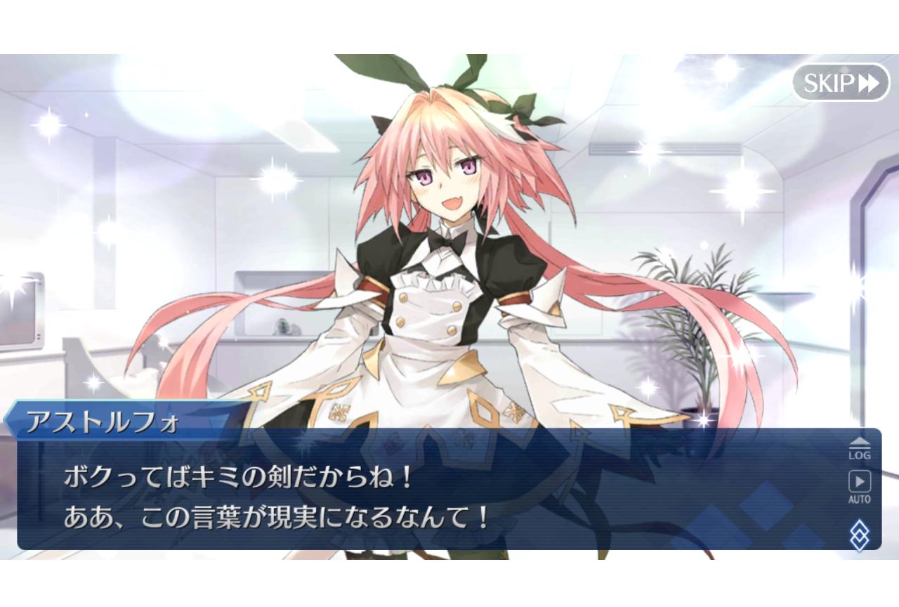 『Fate』シリーズ用語・ネタ解説【連載17回:ボクはキミの剣】