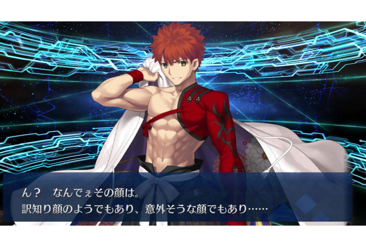 『Fate』シリーズ用語・ネタ解説【連載第20回:なんでさ】