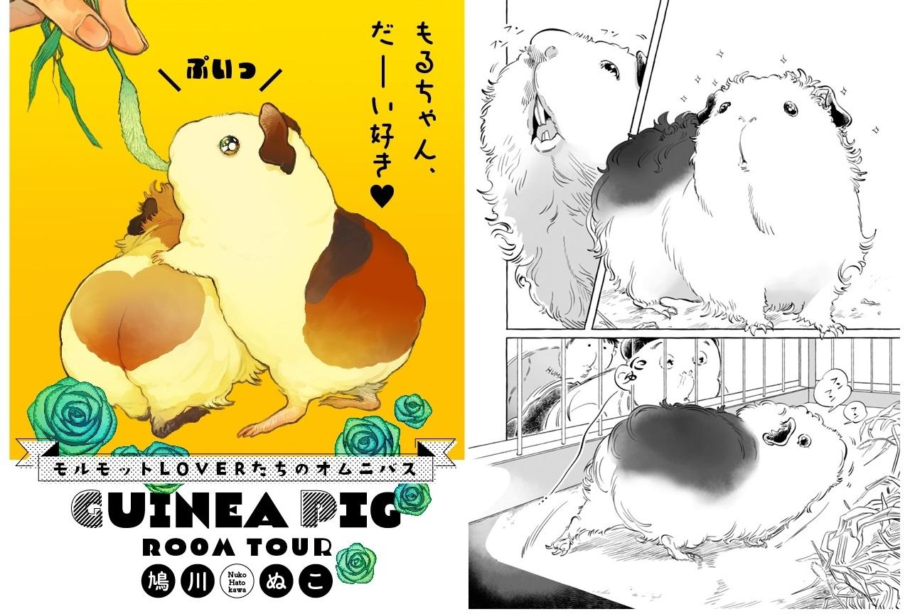 オムニバス漫画「GUINEA PIGROOM TOUR」連載スタート