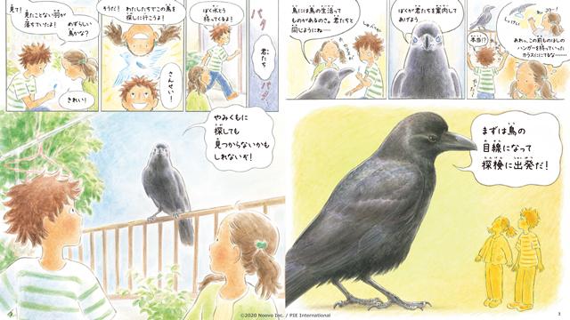 『青い羽みつけた!』の感想&見どころ、レビュー募集(ネタバレあり)-10