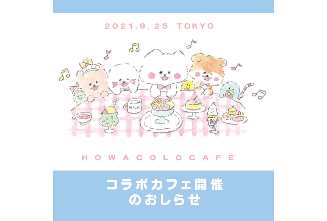 『ほわころくらぶ』のコラボカフェがお台場「東京恋テラス」で開催中