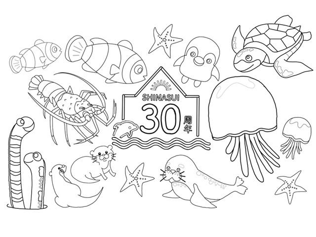 しながわ水族館の音声ガイドコンテンツ「シュラとニコのしな水大冒険!」を声優・梶裕貴さん、峯田茉優さんが担当・コメント到着!-17