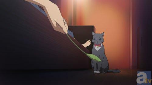『スタミュ(第3期)』あらすじ&感想まとめ(ネタバレあり)-6