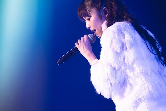 元日のコンサートにて、Pileさん武道館ライブの開催が発表!