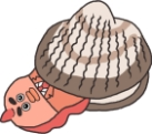 人気声優・増田俊樹さんと山下大輝さんが初めての共同作業でケーキ入刀!?「ZIP!」内アニメ『朝だよ!貝社員』8月31日放送回にて初共演-2
